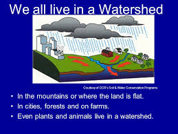 We All Live in a Watershed Poster Contest